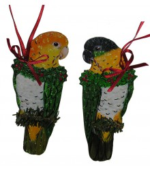 Hand Painted White Belly Caique Ornament