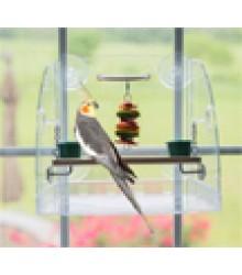 Parrot Window Play Center