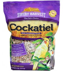 Cockatiel Sweet Harvest
