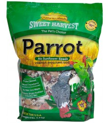Parrot No Sunflower Sweet Harvest