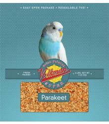 Volkman Seed Parakeet