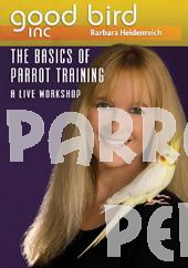 Good Bird DVD Part 5 - The Basics of Parrot Training A Live Workshop