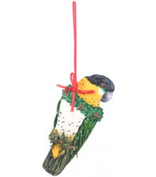 Hand Painted Black Headed Caique Ornament
