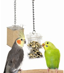 Foraging Box Feeder