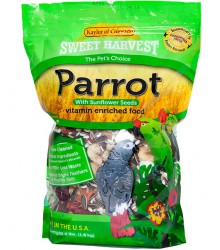 Parrot With Sunflower Sweet Harvest