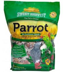 Parrot No Sunflower Sweet Harvest