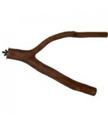 "Dragonwood Branch 10"" - 12"""