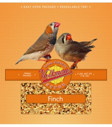 Volkman Seed Finch