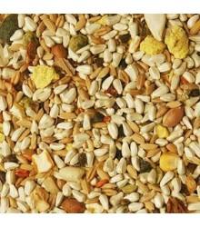 Volkman Seed Hookbill